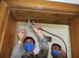 【零距离】福州白蚁防治中心 白蚁防治方法