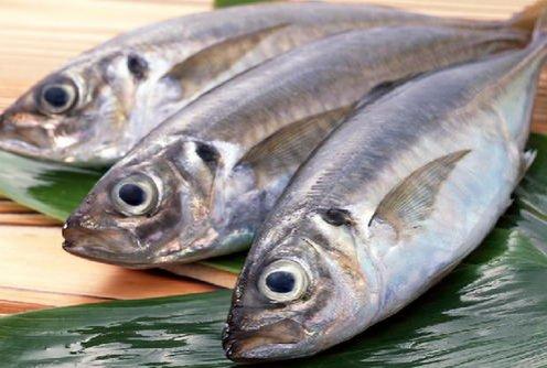 能吃出年轻的抗皱圣品三文鱼