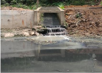 裹挟着垃圾的污水倾流而下进入海仔大排坑。图片来源:生态环境部网站
