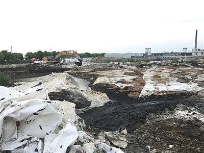 天星村三个污泥池中的北池。黑色污泥上覆盖着稻草和白色薄膜。A10-A11版摄影/新京报记者 陈景收