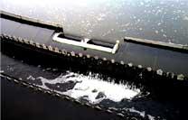 养殖污水处理设备 一体化养殖污水处理设备 投资小